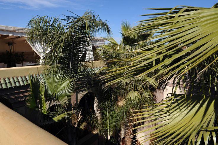 S jour marrakech lumi re sur l islam la villa nomade for Villa jardin nomade
