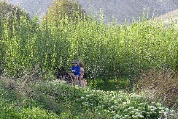 Au vert & à la mer - Un Maroc confidentiel en famille
