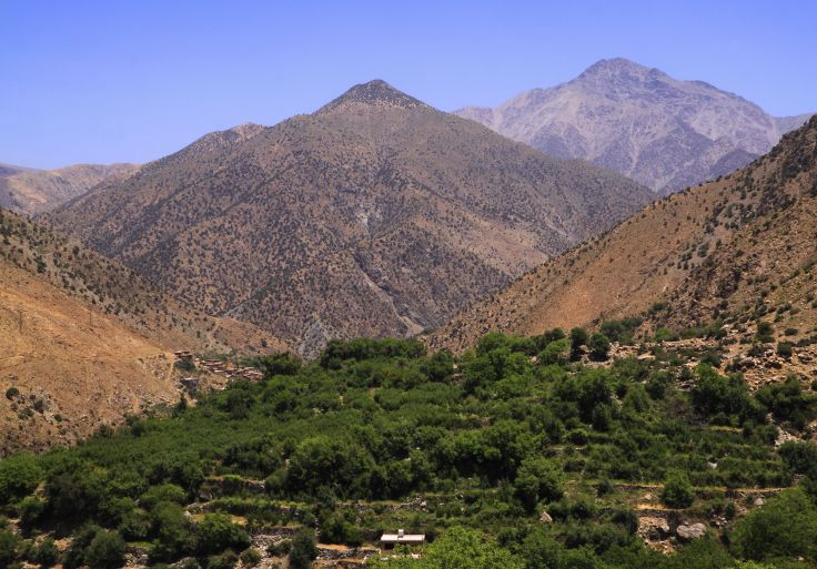 Parc national du Toubkal - Haut Atlas - Al Haouz - Maroc
