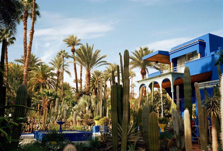 Jardin Majorelle - Marrakech - Maroc