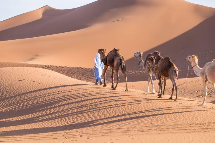 Dunes de Chegaga - Maroc