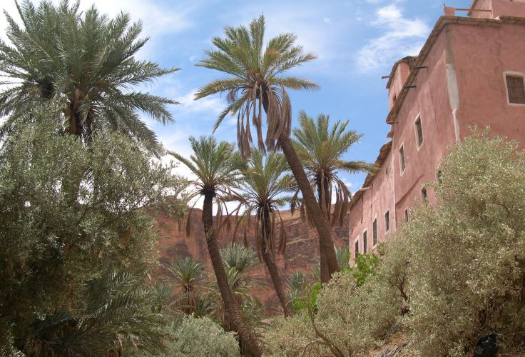 Tafraout - Maroc