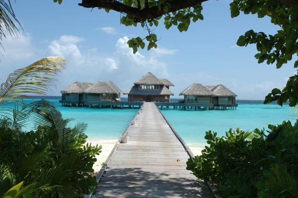 Voyage de noces aux maldives villa avec piscine priv e au for Piscine privee lille