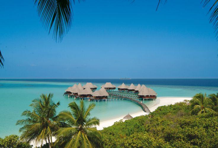 Aux Maldives - Sous les cocotiers du Coco Palm