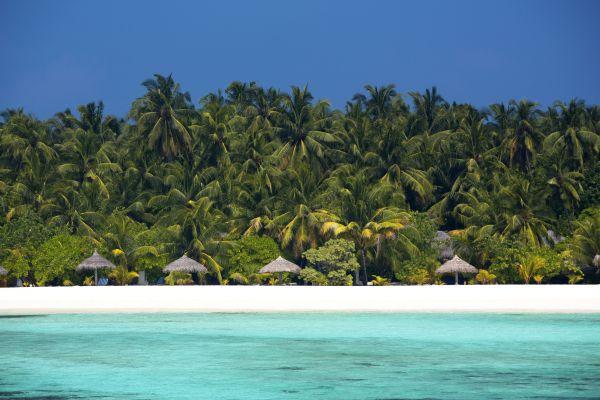Atoll en vue - Les Maldives en mode Robinson