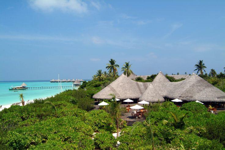 Eden nature et décontracté aux Maldives - Coco Palm Dhuni Kolhu