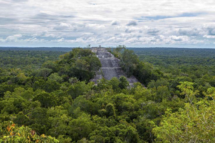 Cité maya de Calakmul - Mexique
