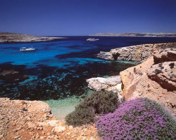 Gozo, plongée au coeur de la Méditerranée