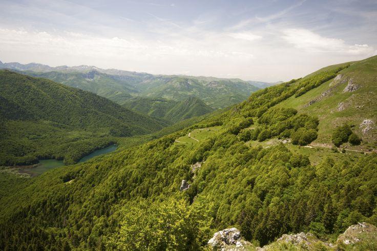 Parc national de Biogradska Gora - Monténégro
