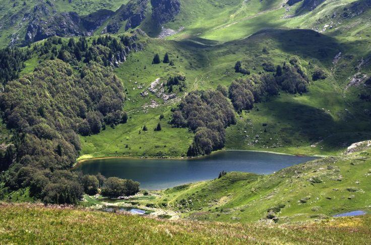 Pesica Lake -  Parc national de Biogradska Gora - Monténégro