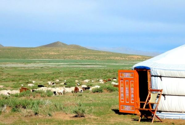 Mongolie - Immersion nomade en camps de charme
