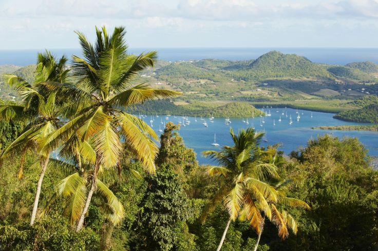 Martinique & Guadeloupe - Ma petite maison créole aux Antilles