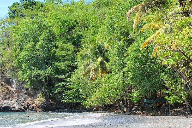 Plage du Carbet - Martinique