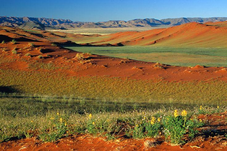 Séjour en Namibie : Bien-être au coeur du désert