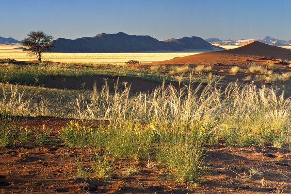 Sur Mesure en Namibie : Road Movie en Namibie