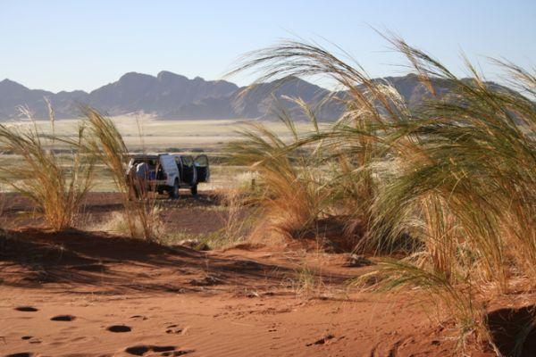 Safari en Namibie - Les griffes du soleil