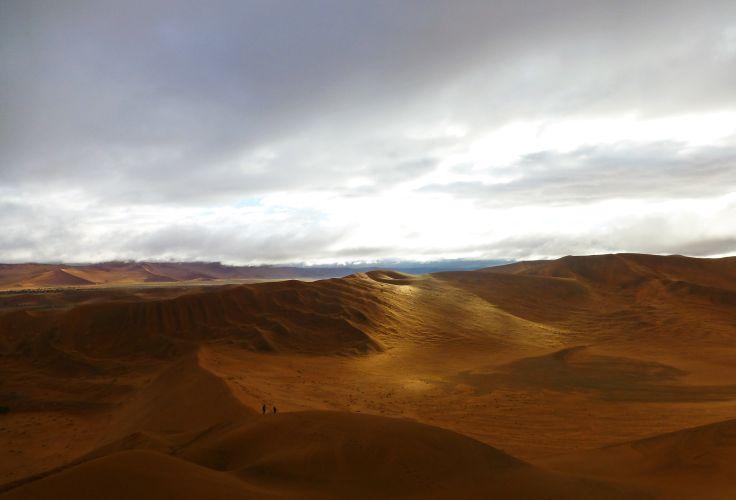Le Désert du Namib - Namibie