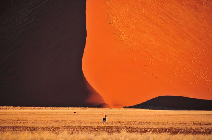 Namibie, Okavango & Chutes Victoria - Lune de miel africaine
