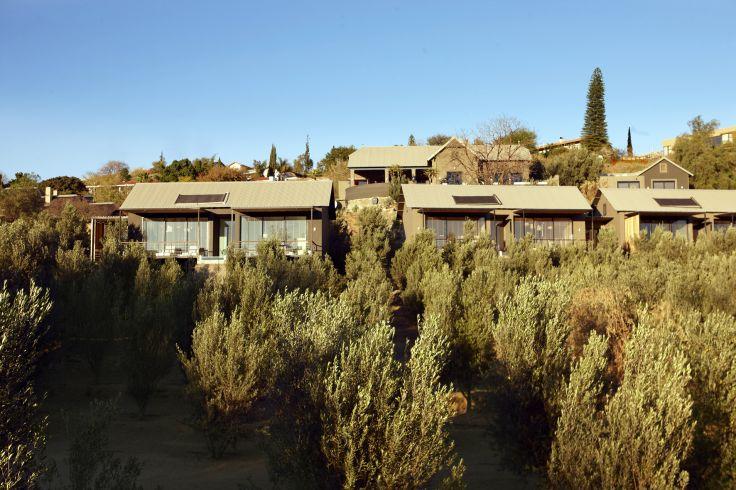 The Olive Exclusive - Windhoek - Namibie