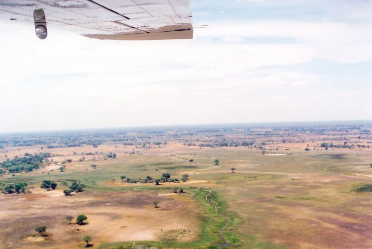 Delta du fleuve Okavango - Botswana