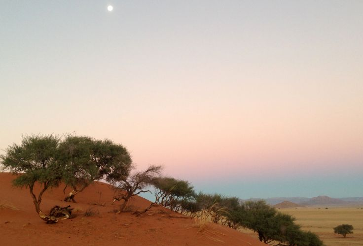 Désert - Sesriem - Namibie