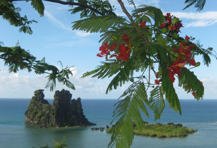 Vue de la Poule de Hienghene - Grande-Terre - Nouvelle-Calédonie