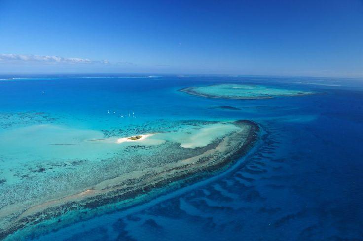 Ile aux goélands - Nouméa - Province Sud - Nouvelle Calédonie