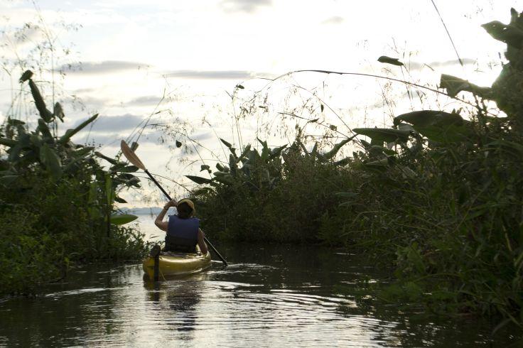 Kayak dans les marais d'Ometepe - Nicaragua