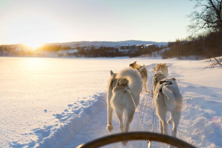 Région de Kirkenes - Norvège