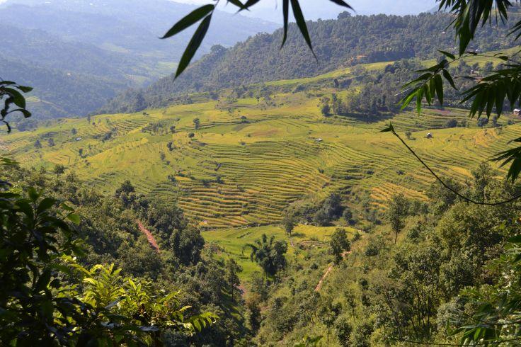 Région de Gorkha - Népal