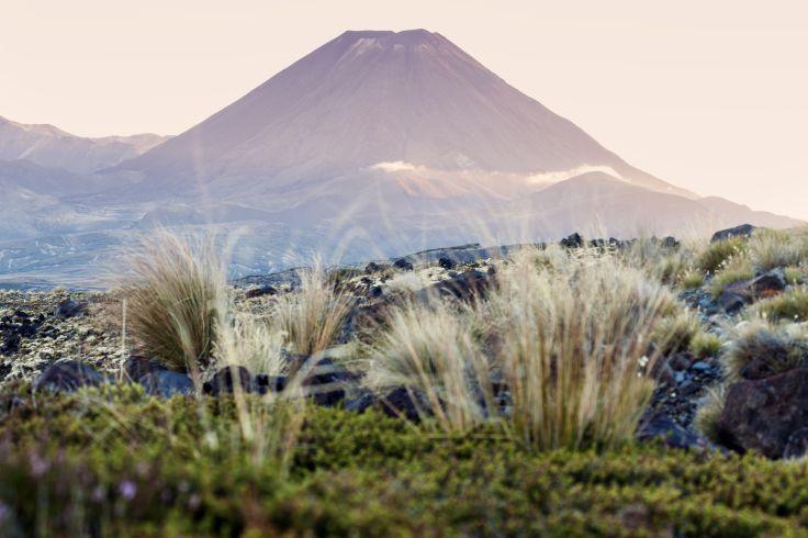 Mont Ruapehu - Parc national de Tongariro - Nouvelle-Zélande
