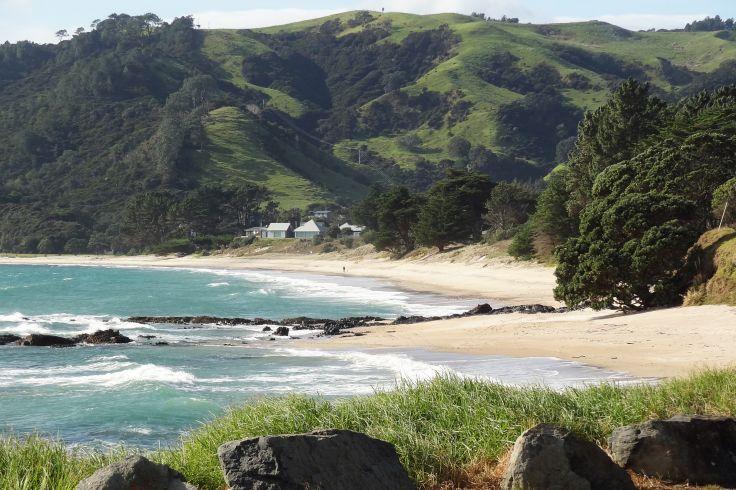 Péninsule de Coromandel - Île du Nord - Nouvelle-Zélande
