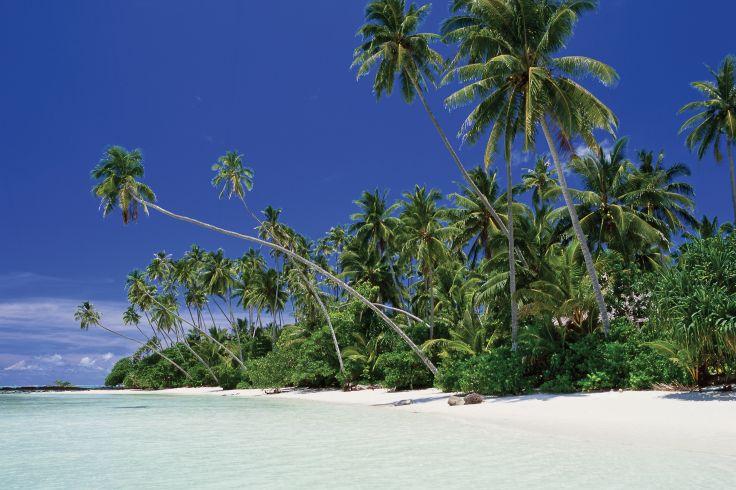 Virgin Cove - Upolu Island - Samoa