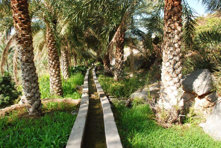 Falaj dans les jardins de Misfat al Abreyeen - Oman
