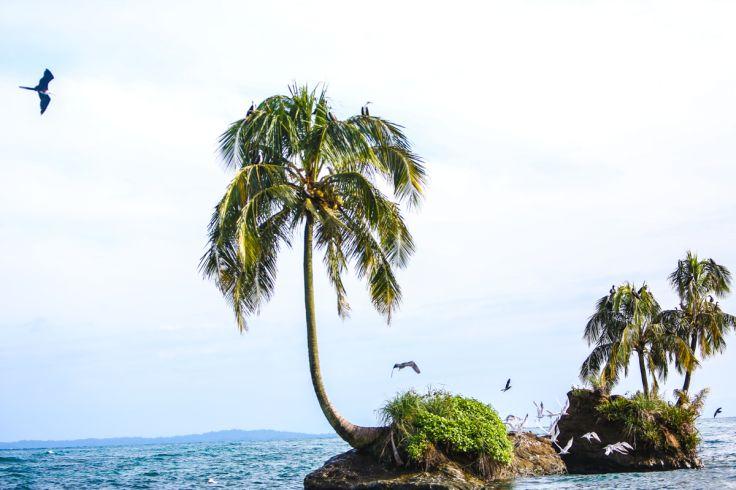 Azul Paradise - Bocas del Toro - Panama