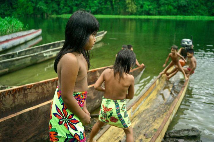 Parc national de Soberania - Panama