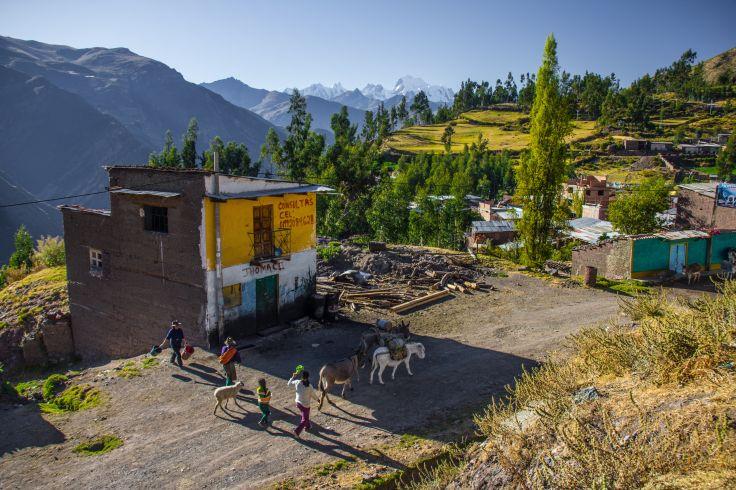 Cordillère des Andes - Pérou