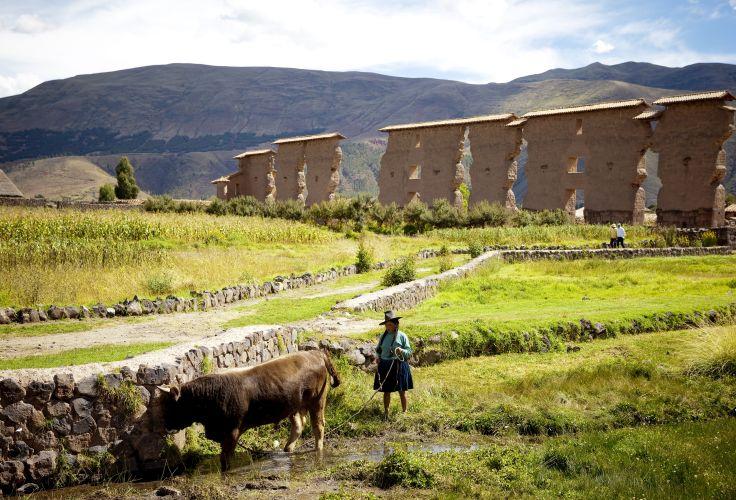 Temple de Raqchi - Cuzco - Pérou