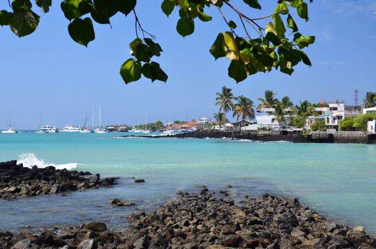 Santa Cruz - Galapagos - Equateur