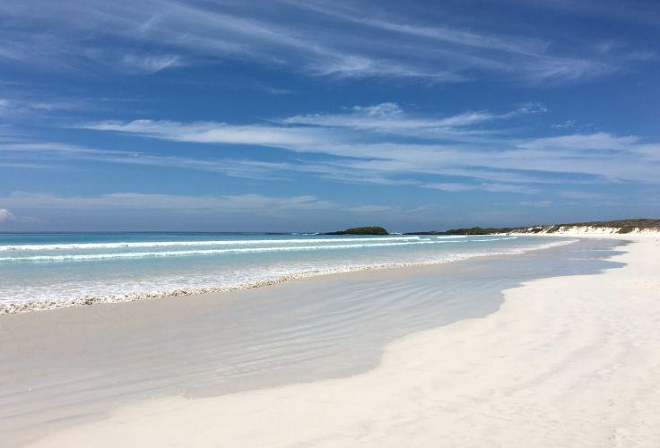 Tortuga Bay sur l'île Santa Cruz - Îles Galápagos - Equateur