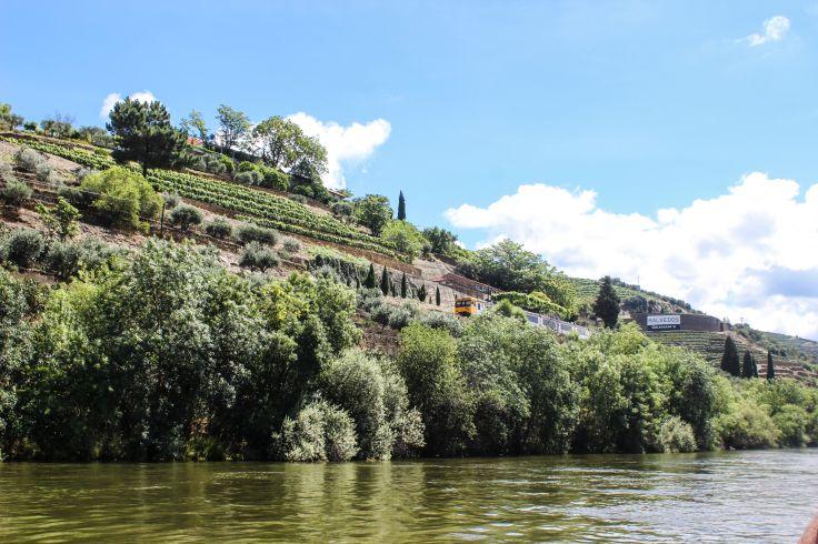 Vallée du Douro - Région Nord - Portugal