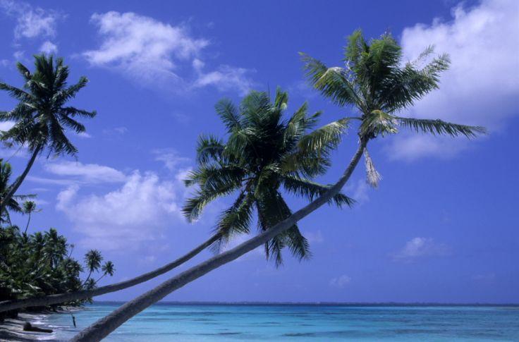 Fakarava - Polynésie