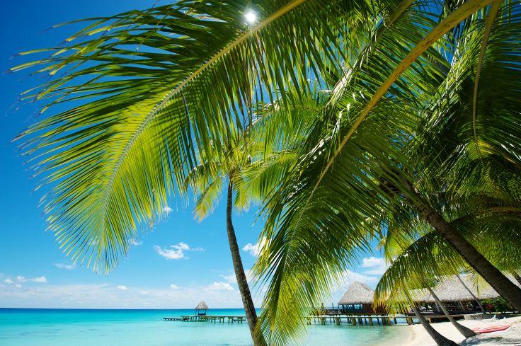 Tahiti, Moorea, Bora Bora & Rangiroa - Le rêve polynésien