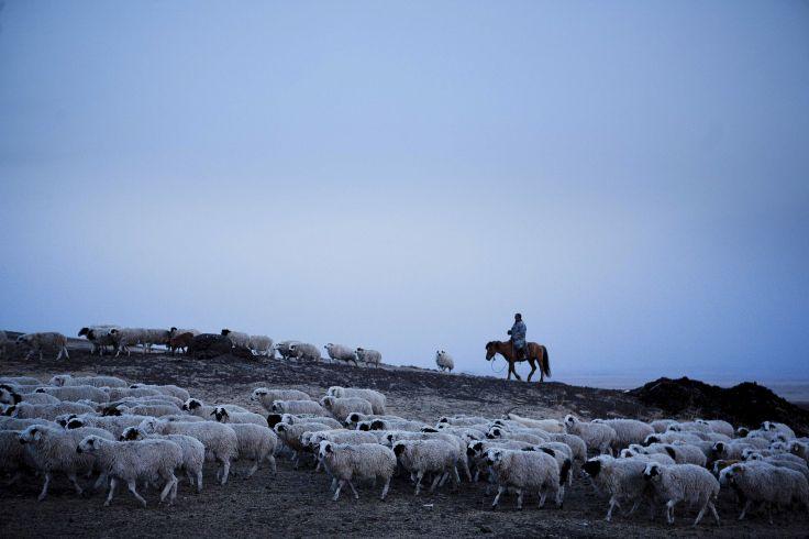 Khentii - Mongolie