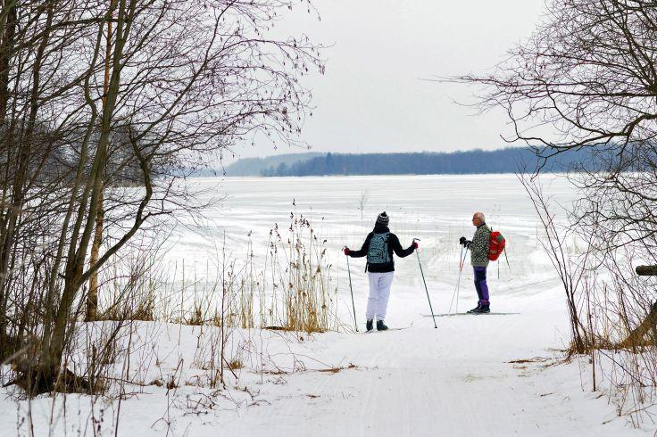 Lac Onega - Île de Kiji - Carélie - Russie