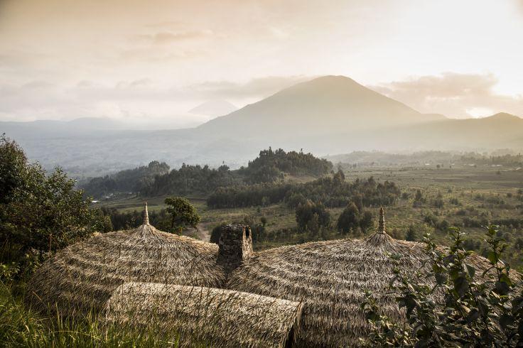 Parc National des Volcans - Rwanda