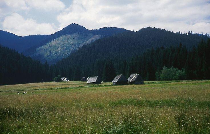 Tatras - Zakopane - Pologne