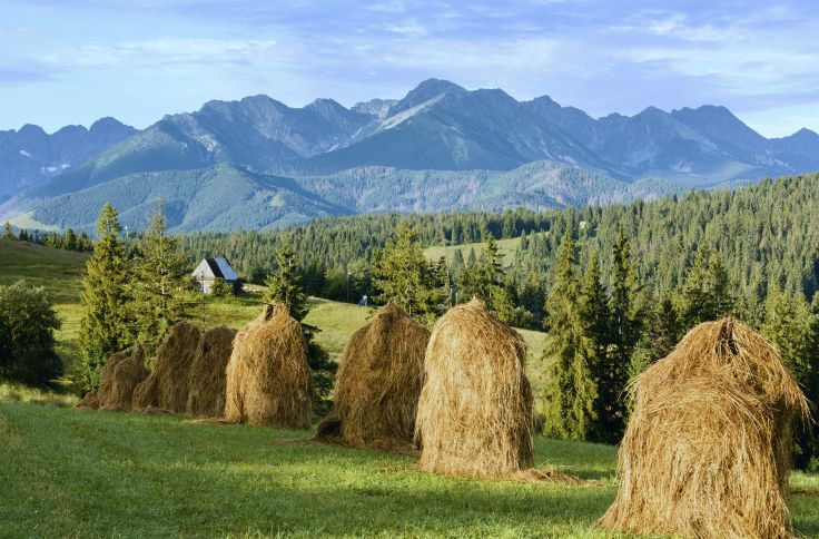 Massif des Tatras - Pologne