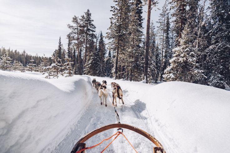 Laponie - Suède
