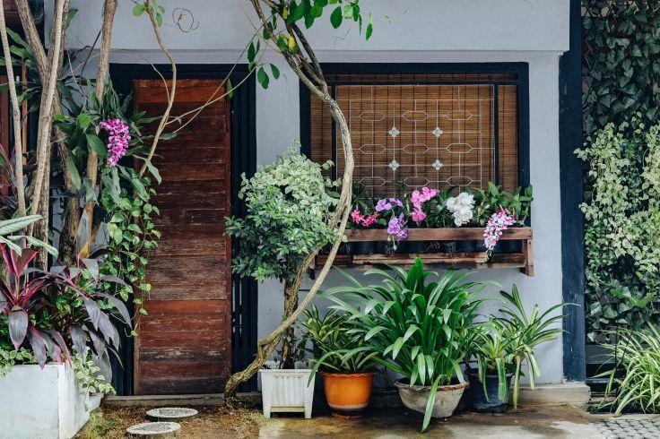 Chiang Mai - Thaïlande